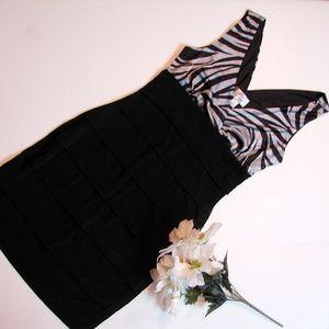 Sweet Storm Zebra Mini Babydoll Dress